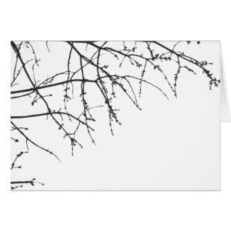 White Tree Branch Silhouette Card