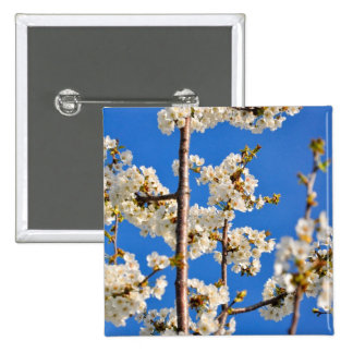 White tree flowers buttons