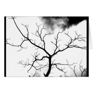 """""""White Tree"""" JTG Art Greeting Card"""