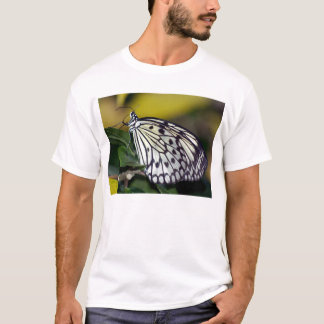 White Tree Nymph Butterfly  T-Shirt