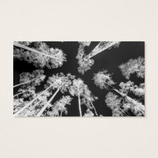 White Trees Business Card