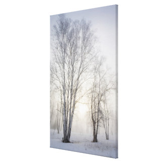 White Trees on a Snowy Day Canvas Print