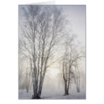 White Trees on a Snowy Day Card