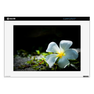 "White tropical flower (frangipani) close up 15"" laptop decals"