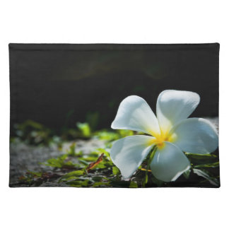 White tropical flower (frangipani) close up placemat
