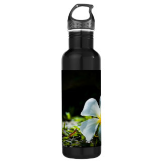 White tropical flower (frangipani) close up stainless steel water bottle
