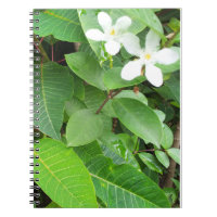 White Tropical Flowers Notebook