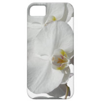 White Tropical Orchids iPhone SE/5/5s Case