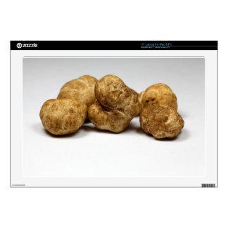 "White truffles of the species tuber oligospermum. 17"" laptop decal"