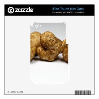 White truffles of the species tuber oligospermum. skins for iPod touch 4G