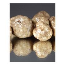 White truffles Tuber oligospermum Letterhead