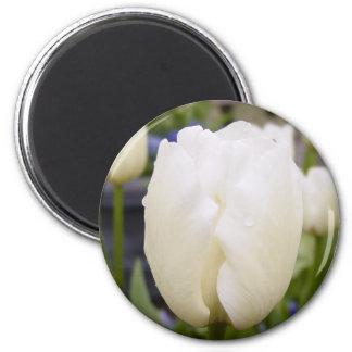 White Tulip 2 Inch Round Magnet