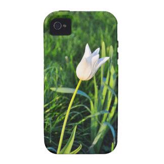White tulip iPhone 4 cover