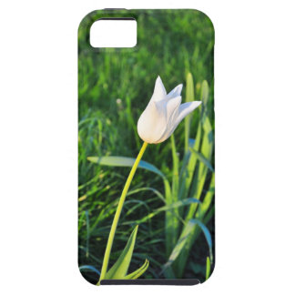 White tulip iPhone 5 case