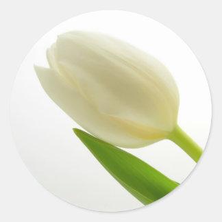 White Tulip Classic Round Sticker