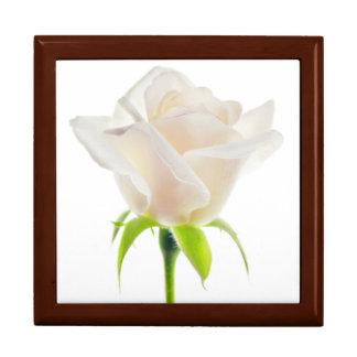 White Tulip Flower Clear Background Floral Keepsake Box