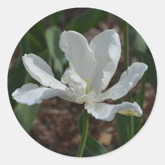 White Tulip Flower Stickers