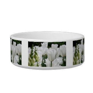 white tulip garden bowl