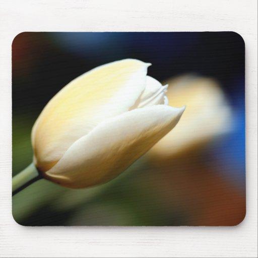 White Tulip - Mousepad