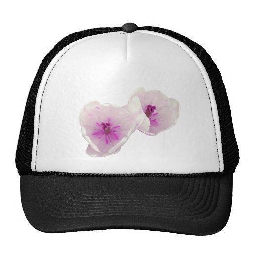 White-tulips Cap