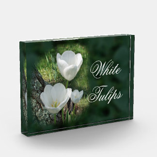 White Tulips Flower Trio Award