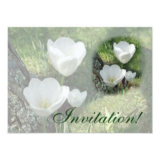 White Tulips Flower Trio Card