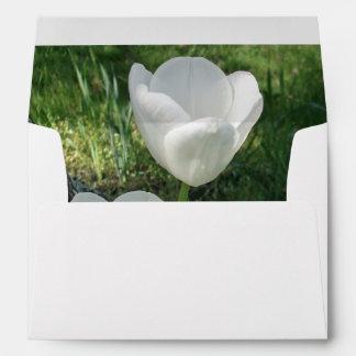 White Tulips Flower Trio Envelopes