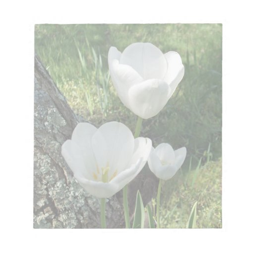White Tulips Flower Trio Memo Notepad