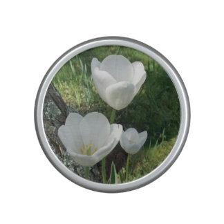 White Tulips Flower Trio Bluetooth Speaker