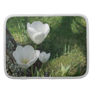 White Tulips Flower Trio Organizers