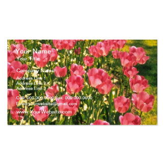 White Tulips flowers Business Cards