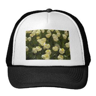 White Tulips in the Boston Gardens Trucker Hat