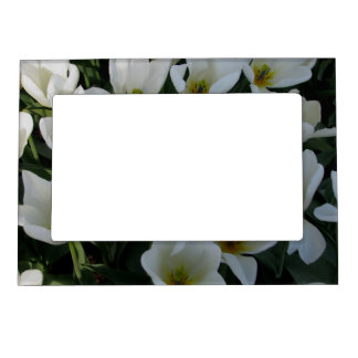 White Tulips Magnetic Picture Frame