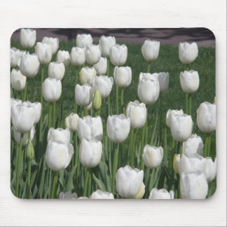 White Tulips Mouse Pad