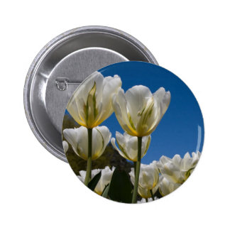 White Tulips Photo Buttons
