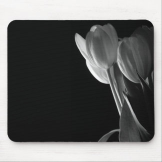 White Tulips Photo On Black Background Mouse Pad