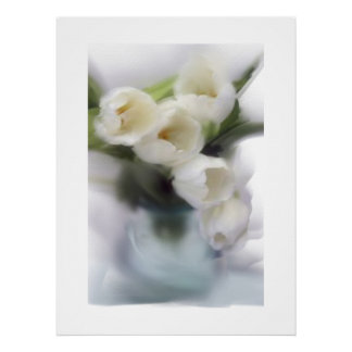 White Tulips Poster