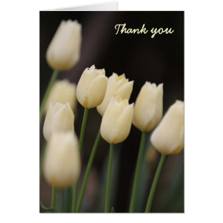 White Tulips Thank You Cards