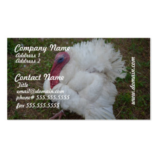 White Turkey Business Card Template