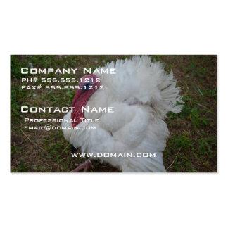 White Turkey Business Cards