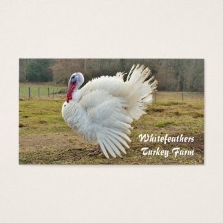 White turkey in a field photo business card