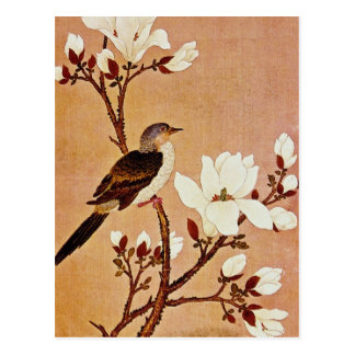 white Turtledove on Flowering Branch, Chiang T'ing Postcard