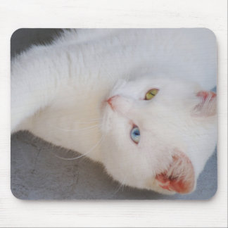 White Van cat with one green eye & one blue eye Mouse Pad