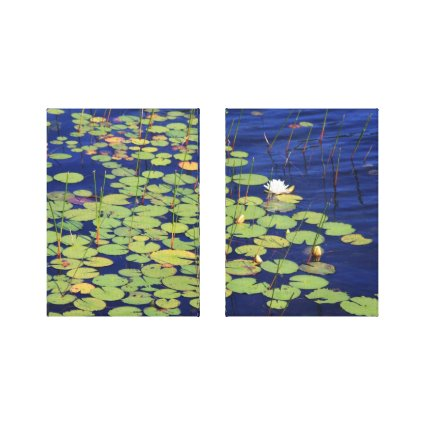 White Water Lilies And Lily Pads Photo Canvas Print