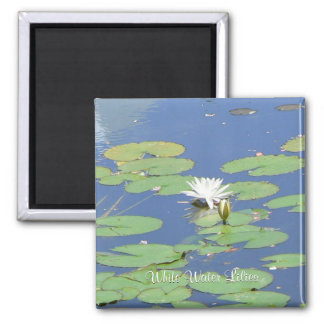White Water Lilies 2 Inch Square Magnet