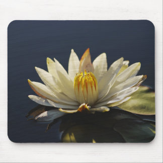 White water lilly mousemats - customizable mouse pad