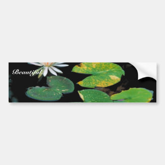 White water lily car bumper sticker