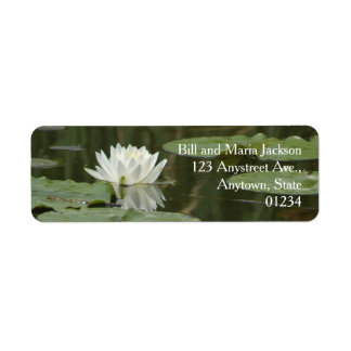 White Water Lily Flower Pads Reflection in Pond Label