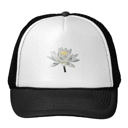 White Water Lily in Sunshine Trucker Hats