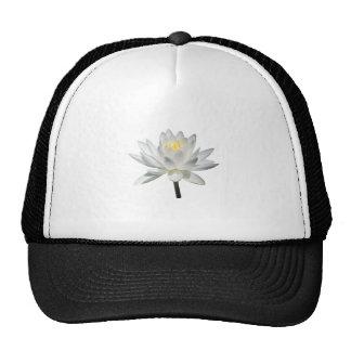 White Water Lily in Sunshine Trucker Hat